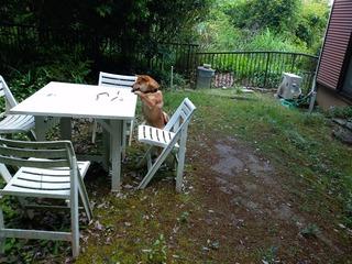 テーブルとソラ1.jpg