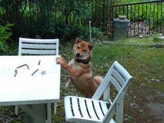 テーブルとソラ2.jpg