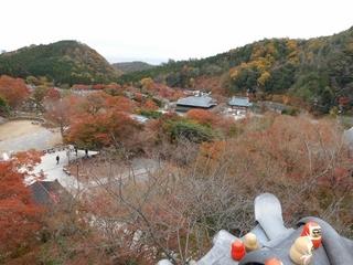 勝尾寺 全景 (800x600).jpg