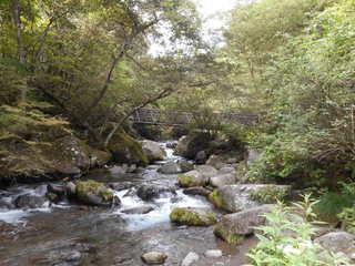 吐竜の滝(河原).JPG