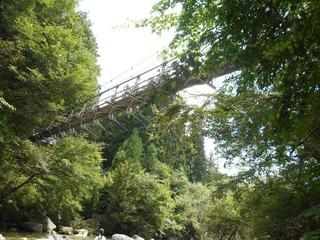 尾白川渓谷 吊り橋.JPG