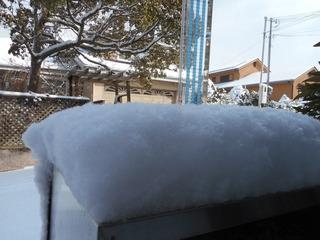 積雪8�p.JPG