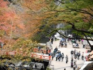 箕面の大滝 (800x600).jpg